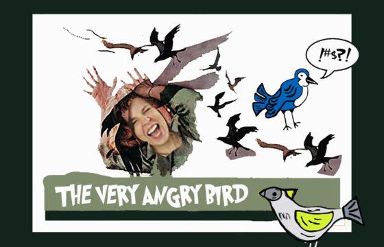 The Very Angry Bird